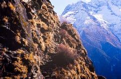 Trekking de l'Himalaya Photo libre de droits
