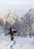 trekking vinter arkivbild