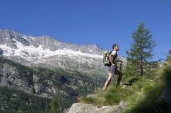 Trekking w Alps Fotografia Stock