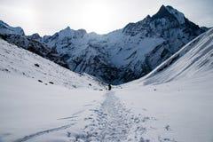 Trekking w Annapurna podstawowym obozie Obraz Stock