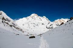 Trekking w Annapurna podstawowym obozie Zdjęcie Royalty Free
