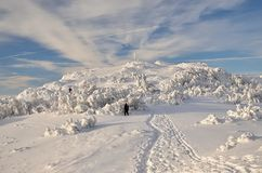 Trekking in winter mountains. Winter path leading to the top of the mountain in Slovakia royalty free stock photo