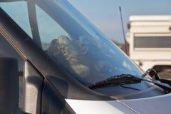 Trekkingsschuhe trocknen in einem schmutzigen Auto 4wd Stockbild