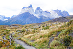 Trekkingsweg in Torres Del Paine National Park, Chili Stock Foto's