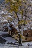 Trelechamps, Chamonix, haute Savoie, Frankreich Stockfoto