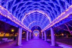 Trellis διακοπών φωτισμός: Πάρκο του Christopher Columbus στοκ φωτογραφία με δικαίωμα ελεύθερης χρήσης