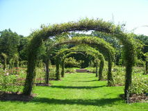 Trellis κήπος Στοκ Φωτογραφίες
