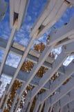 trellis πάρκων Στοκ φωτογραφίες με δικαίωμα ελεύθερης χρήσης