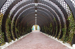 Trellis arches Royalty Free Stock Photography