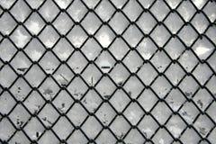Trellis de fil de Rabitz Image libre de droits
