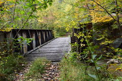 Trestle in the Forest Royalty Free Stock Photography