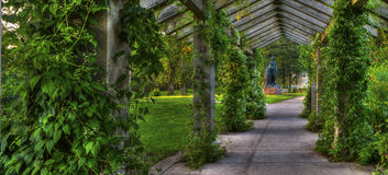 Trellis in the park Royalty Free Stock Image
