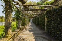 A trellis walkway leading to Hever Lake Royalty Free Stock Photo