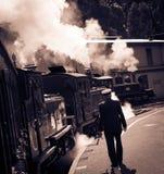 Trem australiano nostálgico do vapor foto de stock royalty free