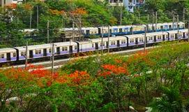 Trem da estrada de ferro de Mumbai cercado por árvores fotos de stock