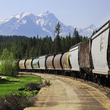 Trem de frete longo Fotografia de Stock Royalty Free