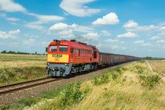 Trem de mercadorias do  V de Mà Imagem de Stock