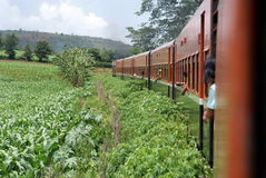 Trem e campo Fotografia de Stock