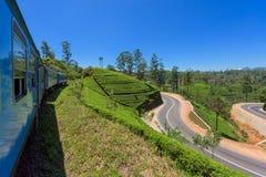 Trem entre plantações de chá Foto de Stock Royalty Free