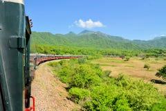 Trem na garganta de cobre, México do EL Chepe imagem de stock