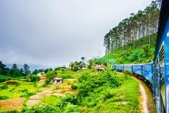 Trem perto de Ella, correndo através dos campos do chá Sri Lanka imagem de stock royalty free