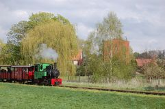 Trem Railway do vapor do calibre estreito Foto de Stock