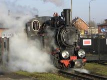 Trem Railway do vapor do calibre estreito Fotografia de Stock