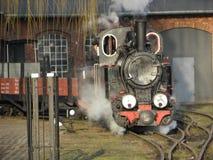 Trem Railway do vapor do calibre estreito Foto de Stock Royalty Free