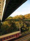 Trem sob a ponte Fotos de Stock Royalty Free