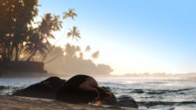Tremendous girl does yoga exercise on sandy beach in morning. Tremendous girl silhouette does yoga exercise on sand beach against blue ocean and palms in morning stock footage