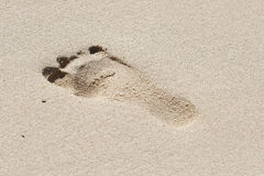 Trempez dans le sable Image stock