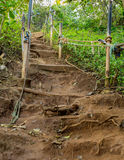 Trempez la montée sur le chemin de saleté vers le haut du flanc de coteau Image stock