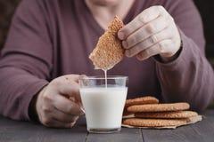 Trempez les biscuits de biscuits de sésame dans la tasse de lait sur la table photos libres de droits