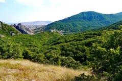 Trempez les pentes herbeuses sur le fond de hautes montagnes sans fin couvertes d'arbres photographie stock
