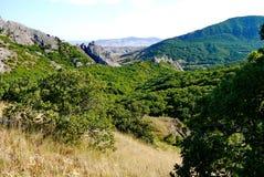 Trempez les pentes herbeuses sur le fond de hautes montagnes sans fin couvertes d'arbres images stock