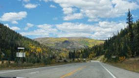 Tremule dorate di Colorado fotografie stock libere da diritti