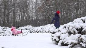 Trenó da tração do pai fêmea com o bebê em montes de neve e arbusto coberto com a neve 4K video estoque