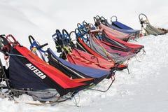 Trenó de cão dos esportes ou trenó para disciplinas dos esportes da neve - competência do cão de cão do trenó Imagens de Stock