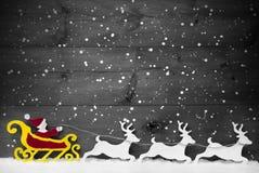 Trenó de Gray Card With Santa Claus, rena, floco de neve, espaço da cópia fotografia de stock royalty free