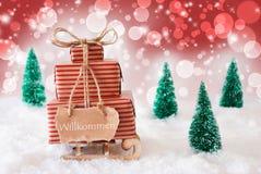 Trenó do Natal no fundo vermelho, boa vinda dos meios de Willkommen Foto de Stock
