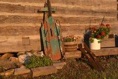 Trenó e potenciômetros antigos das flores por uma parede da cabana rústica de madeira foto de stock royalty free
