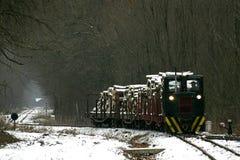 Tren de carga en Gemenc Fotos de archivo libres de regalías