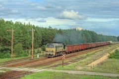 Tren de carga que pasa el bosque Imágenes de archivo libres de regalías