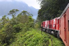 Tren de la selva del Brasil Foto de archivo