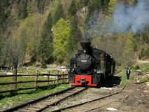 Tren de Mocanita en el valle de Vaser foto de archivo