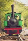Tren del vapor del calibrador estrecho Foto de archivo libre de regalías