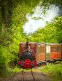 Tren del vapor del vintage Foto de archivo libre de regalías