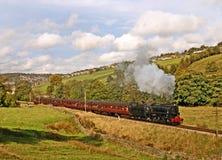 Tren del vapor en campo Fotos de archivo