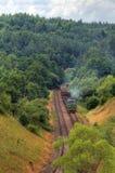 Tren diesel de la carga Imagen de archivo libre de regalías