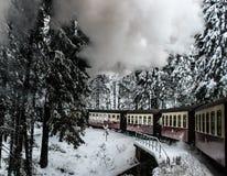 Tren en el bosque nevoso sobre el puente Foto de archivo